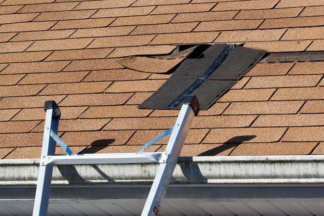 cambridge flat roofing